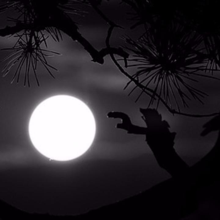 Midnightの画像