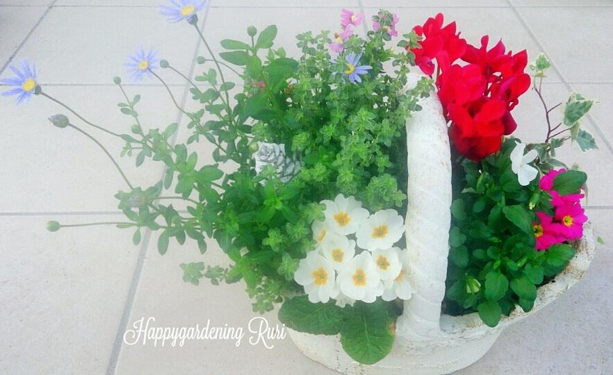 My healing garden rururuの画像