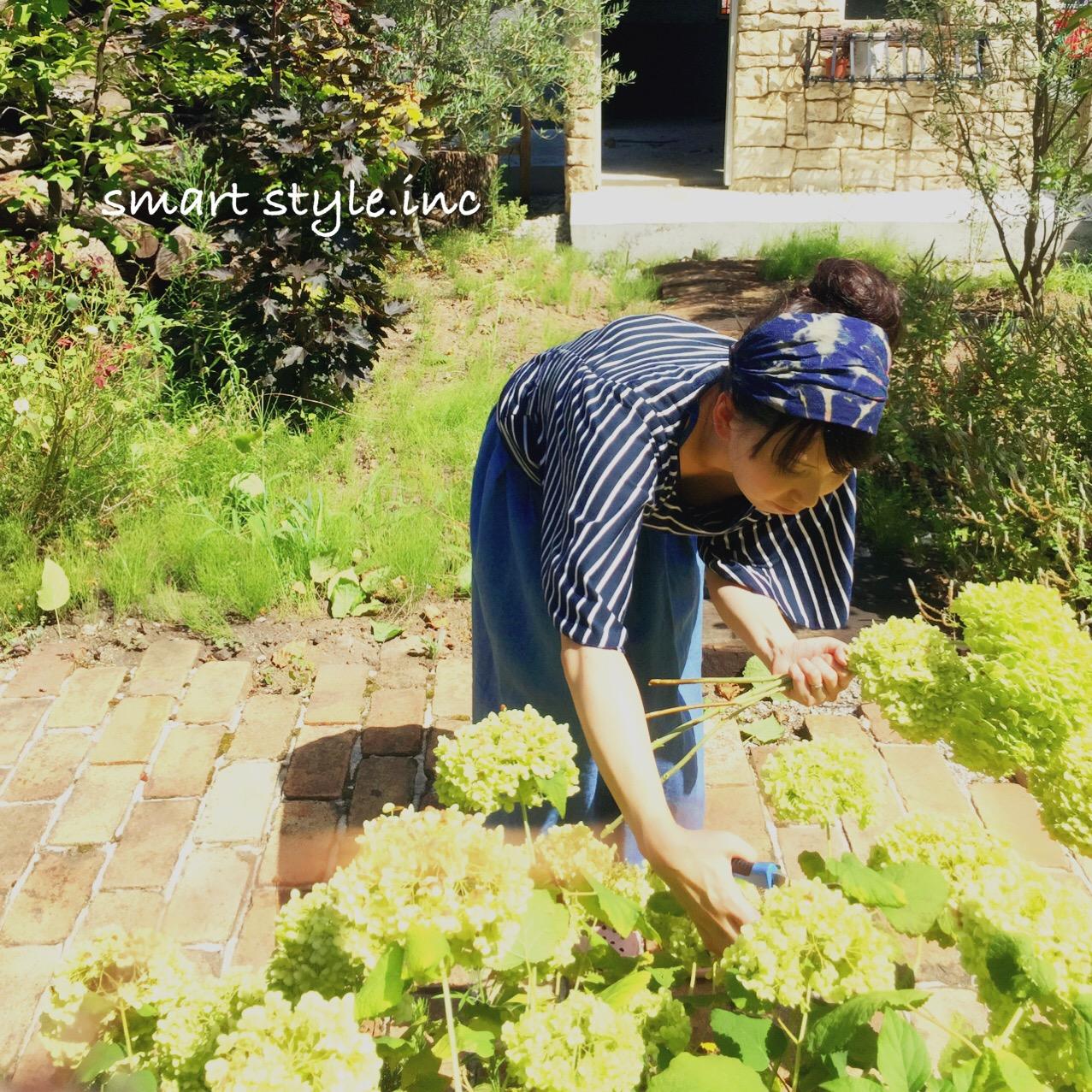 smasta_gardenの画像