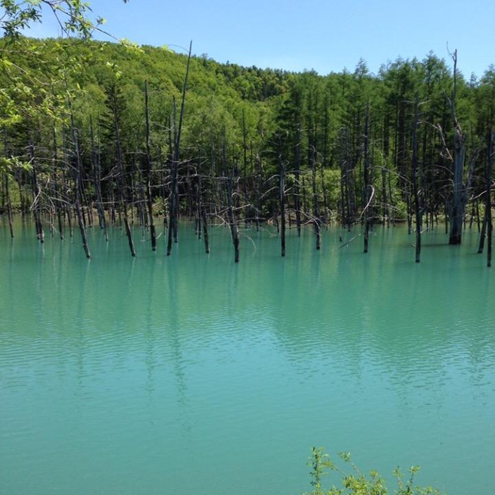 青い池の画像