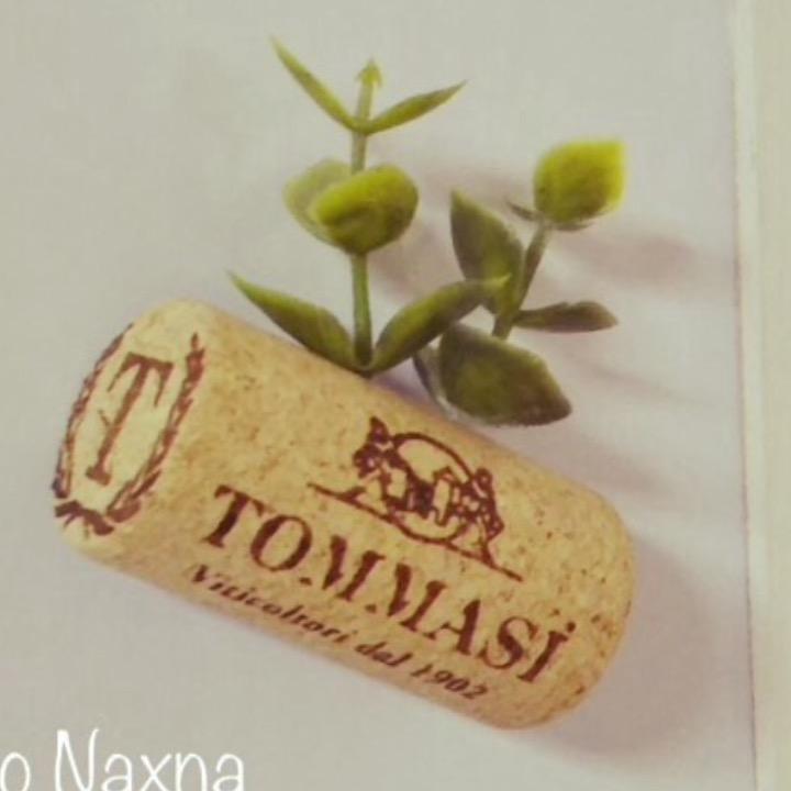Ciao Naxnaの画像