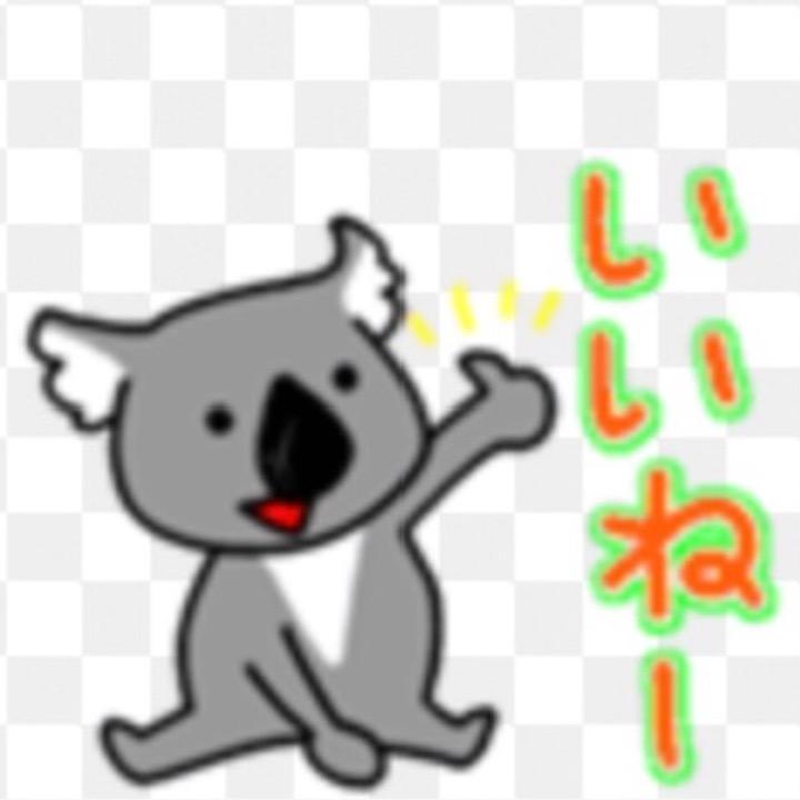 Yoshiki_photoの画像
