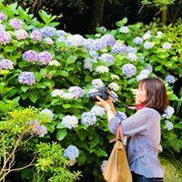 kanae Yasuiの画像