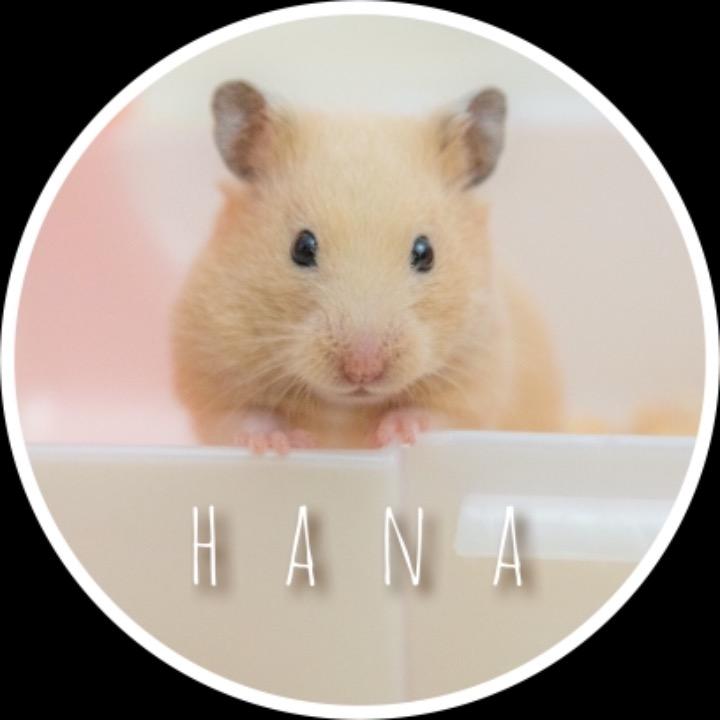 hana02の画像