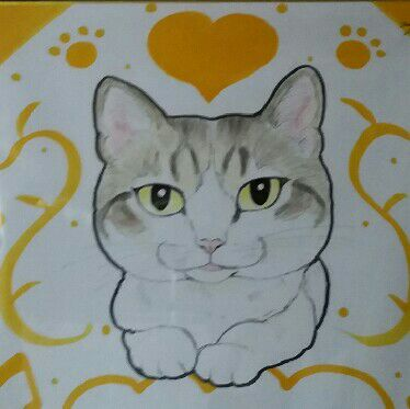 SHINOの画像