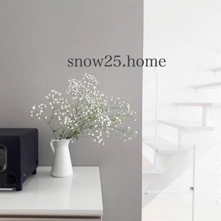 snow25.homeの画像