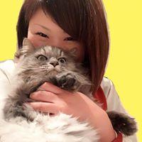 Satomi Fujinoの画像