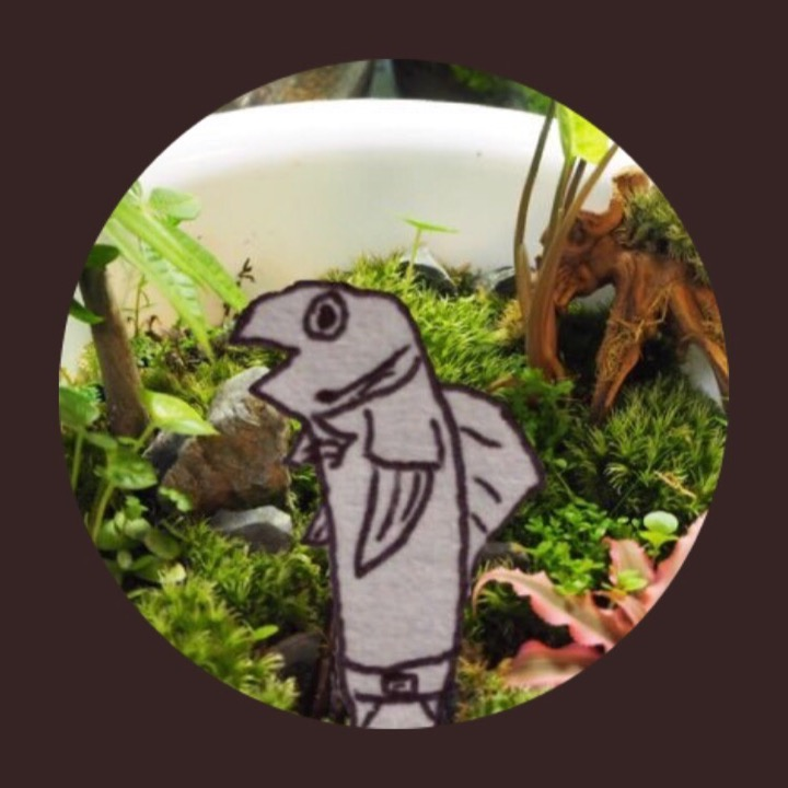 熱帯魚人.comの画像
