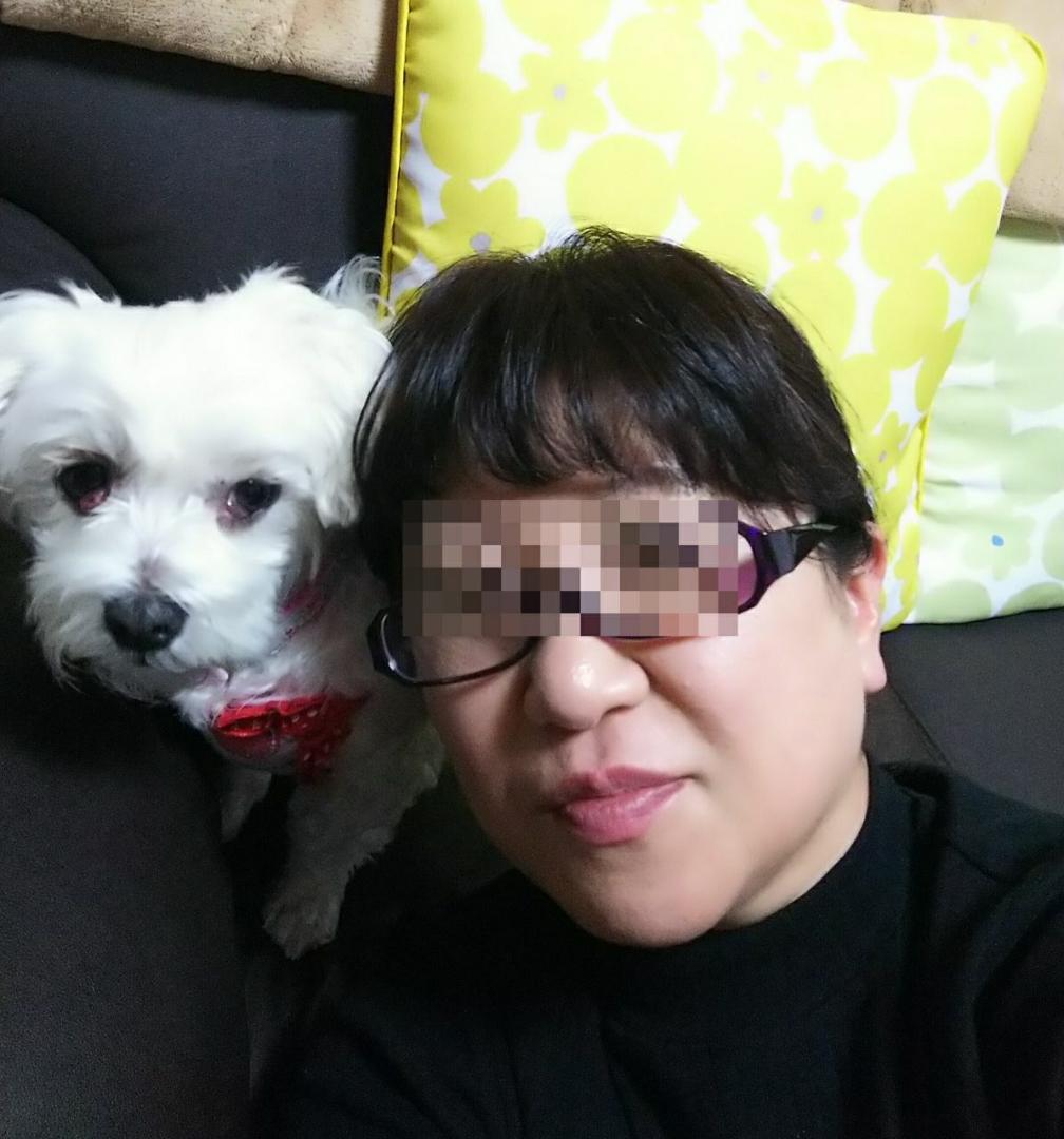 老眼鏡 セリア
