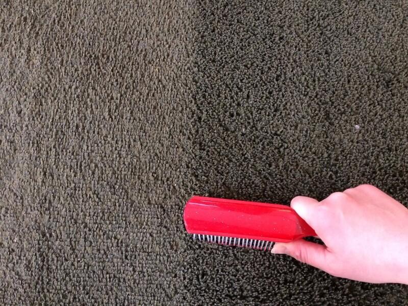 掃除 絨毯