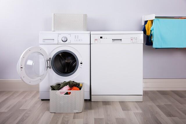乾燥 洗濯 付き 機 機