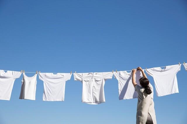 洗濯 アセテート