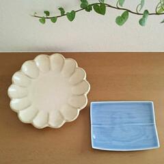 白山陶器/和食器/食器 ほっこり温かい気分にしてくれる和食器。 …