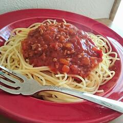 パスタ/ミートソース/手作り/料理/フォロー大歓迎/ごはん/... 今日のお昼ごはんはミートソースのパスタに…(1枚目)