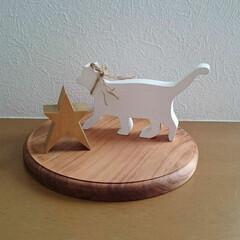 猫雑貨/猫グッズ/インテリア雑貨/猫/雑貨/雑貨だいすき お気に入りの木製雑貨💕 白猫ちゃんと星型…