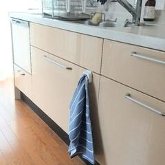 そうじの神様 キッチン用 アミタワシ(モップ、雑巾)を使ったクチコミ「キッチンにタオルホルダーを設置して、ここ…」