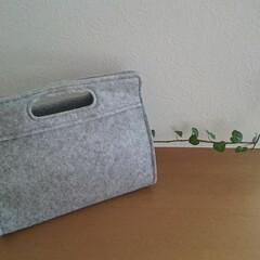 IKEA/バッグインバッグ/雑貨/イケア/暮らし/フォロー大歓迎 IKEAで購入したバッグインバッグがお気…