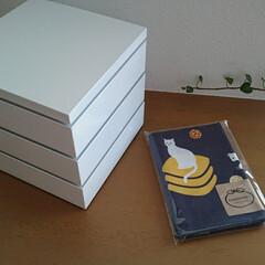 重箱/お弁当/キッチン雑貨/キッチン/暮らし/フォロー大歓迎 運動会のお弁当用にシンプル真っ白な重箱を…