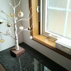 フォロー大歓迎/シラカバツリー/インテリア/玄関/ニトリ/暮らし 玄関インテリア。 小窓に置いている白いボ…