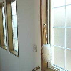 動線/オープン収納/フォロー大歓迎/ウールダスター/小窓/階段/... お掃除しにくい階段の小窓にウールダスター…