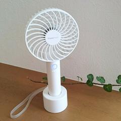 扇風機/ハンディファン/フランフラン/雨季ウキフォト投稿キャンペーン/令和の一枚/フォロー大歓迎/... 去年からずっと欲しかったハンディファンを…