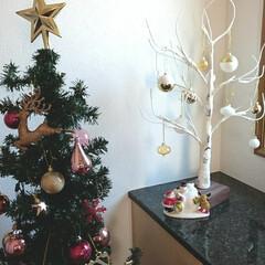 シラカバツリー/クリスマスツリー/玄関インテリア/クリスマス2019/雑貨/ニトリ/... 今年はクリスマスツリーを玄関に飾りました…