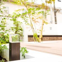 自慢の庭/庭づくり/庭/小林住宅/リクシルエクステリア/リクシル/... ⋆˖弊社デザイン施工例˖⋆  リビングル…(4枚目)