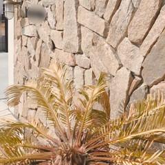 植栽デザイン/植栽/おうち時間の過ごし方/おうちリゾート/庭のある暮らし/外部空間デザイン・グラン/... ⋆˖弊社デザイン施工例˖⋆  天然石を贅…(2枚目)