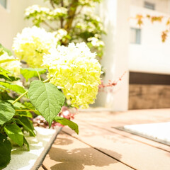 立水栓/植栽スペース/植栽/モダンエクステリア/エクステリアデザイン/エクステリア/... 水場もこだわりのお庭の見せ場のひとつ。モ…(3枚目)