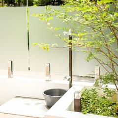 立水栓/植栽スペース/植栽/モダンエクステリア/エクステリアデザイン/エクステリア/... 水場もこだわりのお庭の見せ場のひとつ。モ…(1枚目)