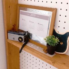 ブログやってます/自作カレンダー/カレンダー/カメラ/雑貨好き/棚/... 残り3ヶ月分のカレンダー作成&お飾り♪(1枚目)