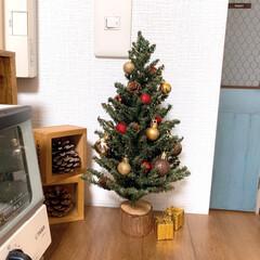 ブログやってます/狭いけど楽しく/ワンルーム/インテリア/クリスマスツリー/クリスマス2019/... ミニクリスマスツリーをお飾り♪(1枚目)