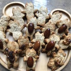 ナッツ/りんごクッキー/クッキー 林檎クッキーを焼きました🍪 (1枚目)