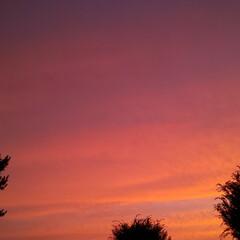 空/空のグラデーション/空の写真/サンセット/夕暮れ風景/夕暮れ/... マジックアワー  (1枚目)