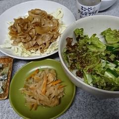 夜ご飯 ✴️豚肉を甘じょっぱく炒め ✴️切り干し…