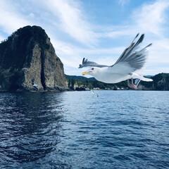 思い出/2018/旅行/風景 今年いちばんの思い出は北海道積丹の海のク…