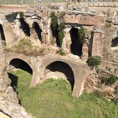 ローマ/パラティーノの丘/イタリア/おでかけ 【パラティーノの丘】  コロッセオの近く…