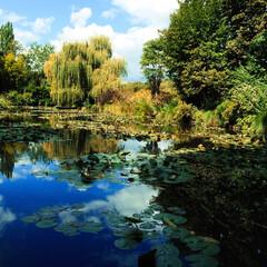 Claude Monet/Les Nymphéas/クロード•モネ/睡蓮の池/France/モネの池/... 【モネの池】  フランスのジヴェルニーと…