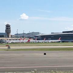 Flughafen Zürich/チューリッヒ国際空港/おでかけ 1年前の今日、妊娠がわかって夫と二人で空…