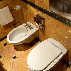 トイレの歴史/Bidet/ビデ/トイレ 【 Bidet(ビデ)】 日本ではスッカ…