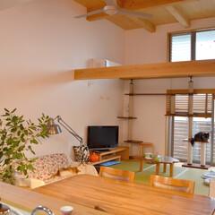 猫/LDK/構造体/ハイサイドライト/鈴木アトリエ/鈴木信弘/... 景観の良い2階は家族が集う リビング・ダ…