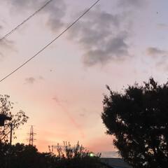 夕焼け/秋/空さん 所用で外に出たら 綺麗な夕焼け 思わずス…