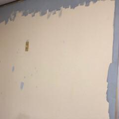 壁紙イメチェン/ニッペペンキセット/ぎっくり背中 壁紙をペイントしてみました  イエローも…(5枚目)