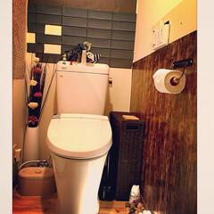 造花/居酒屋風トイレにするー!!!!!笑/クッションフロアシート/カエルちゃん♡/トイレ 間接照明/トイレリフォーム/... トイレ劣化のためLIXILに買い替え。・…(1枚目)