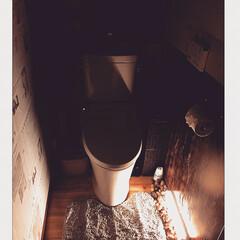 造花/居酒屋風トイレにするー!!!!!笑/クッションフロアシート/カエルちゃん♡/トイレ 間接照明/トイレリフォーム/... トイレ劣化のためLIXILに買い替え。・…(2枚目)