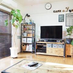 セルフリノベ/リビング/昭和のおうち/築41年/元和室 築41年、この部屋は元和室でした。 夫と…