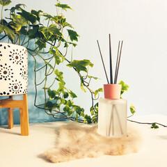 グリーンのある暮らし/グレー/ピンク/オシャレ/300円商品/コットンの香り/... ダイソーの新商品かな。 木製?かな、淡い…