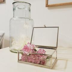 お花/フラワー/ガラスケース/H&M HOME/ライトボール/スリコ/... 桜も🌸キレイだけど、春はお花の季節ですね…