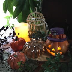気まぐれ投稿すみません/かぼちゃ/ハロウィン ウチにあるいろんなかぼちゃを集めてディス…