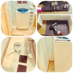 脱衣室/DIY/掃除 いまさらー〜の大掃除(笑) 洗濯機の排水…
